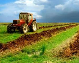 agricol1-600x479