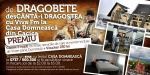 Viva DRAGOBETE site 500 x 250 px