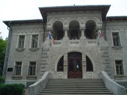 muzeu ion irimescu