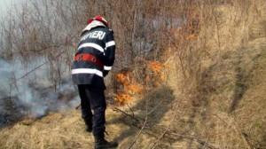 incendiu_vegetatie_bun