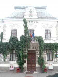 muzeu bucovina