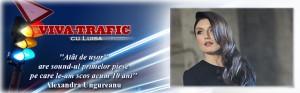 Viva-Trafic-alexandraungureanu