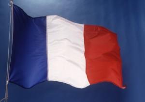 steag franta